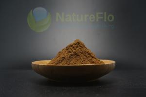 Duanwood reishi polysacchrides 30% + Triterpene 2%