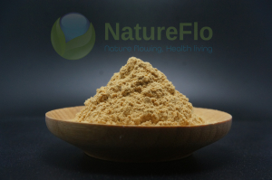 Luo han guo extract Mogrosides 80%/ Mogroside V 25%